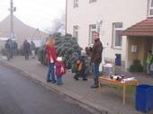 Fotogalerie: Stavění vánočního stromu