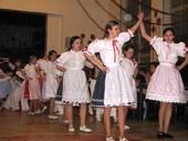 Fotogalerie: Společenský ples Nenkovice